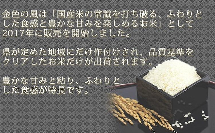 岩手県産金色の風 5kg×20袋 ※定期便6回 安心安全なヤマトライス H074-150