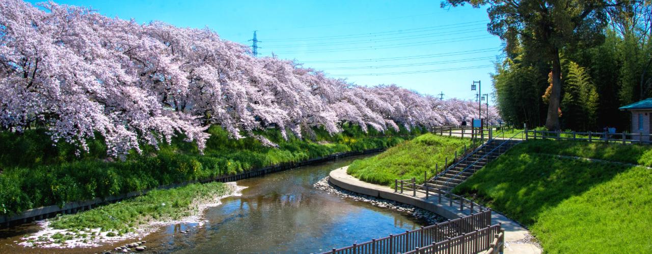 愛知県 岩倉市