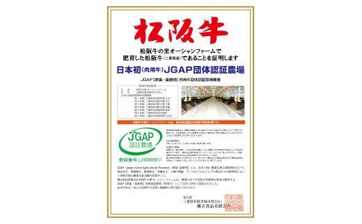 SS-13 松阪牛入り合挽ミンチ 2.5kg