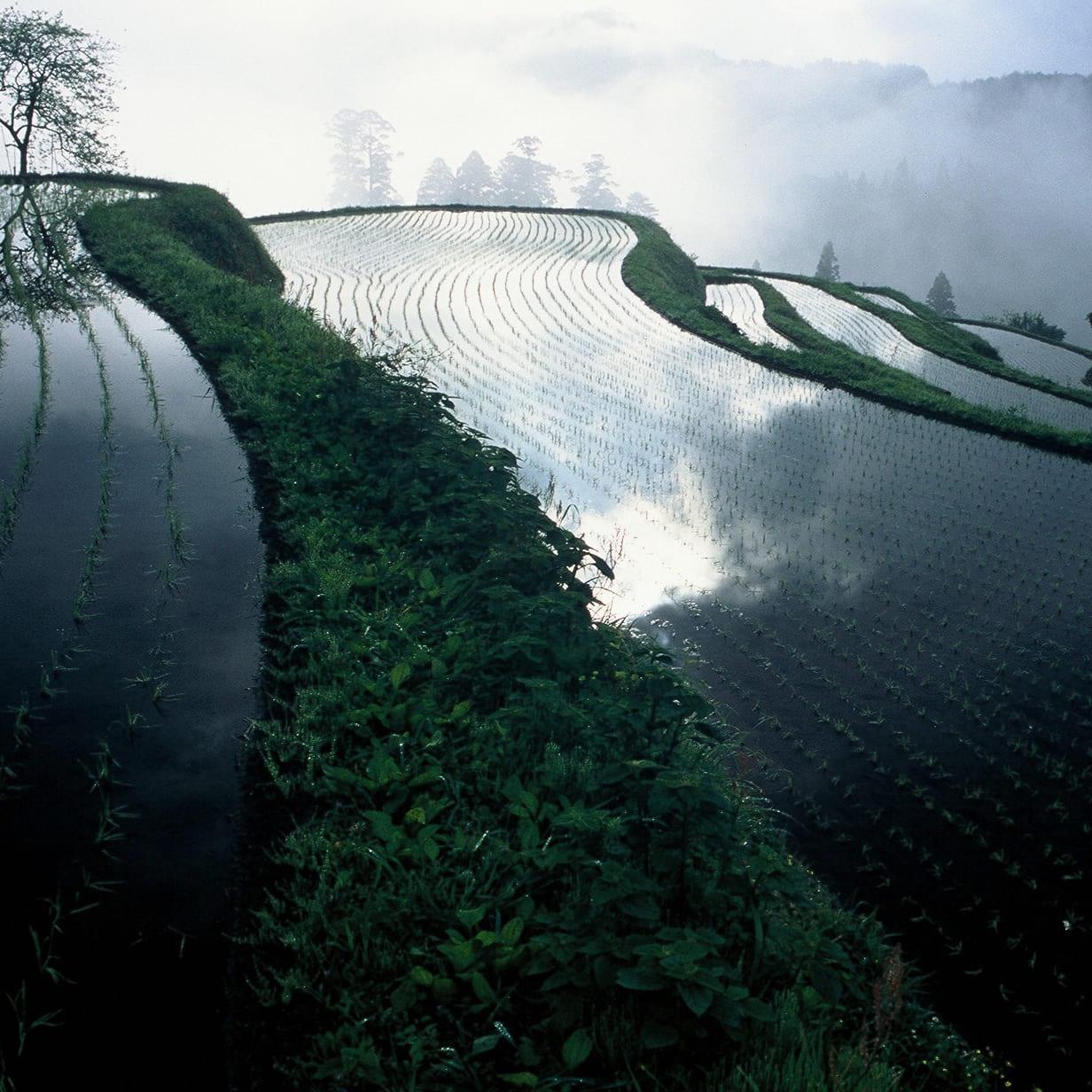 高島市の風景画像