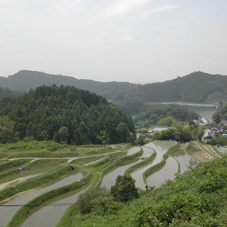 桜井市の風景画像