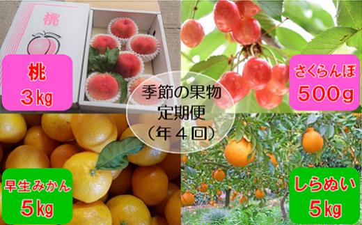 M-DD1.【年4回 季節の果物をお届け】 季節の果物定期便