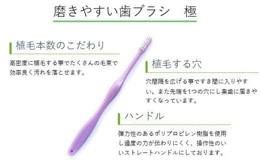 AE-20.【NHKにて紹介されました】歯ブラシ四季折々《極12本セット》