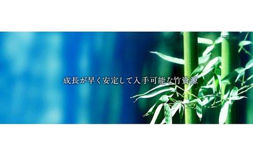AA-43.【あなた好みに】竹の集成材 キータグ 2個セット