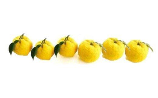 A-29.【山々に囲まれた大和盆地から】柚子しぼりポン酢 鍋用