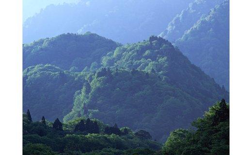 A-28.【山々に囲まれた大和盆地から】柚子しぼりポン酢 かけ用