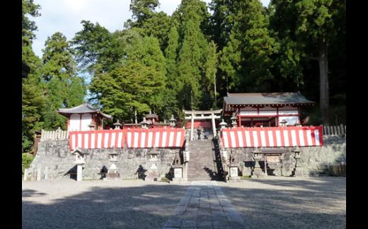 神饌タケノコ 500g入り×3 【2022年5月発送分】