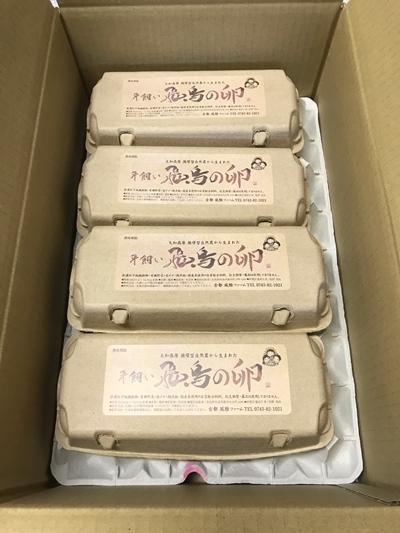 (冷蔵)美味しい 平飼い 飛鳥の卵 40個/古都 風雅ファーム 鶏卵 たまご 玉子 奈良県 宇陀市