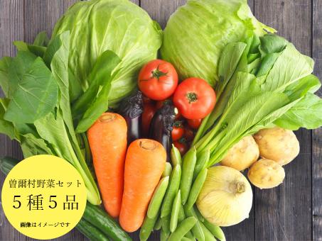 【ふるさと納税】名水流れる曽爾村の5種5品野菜セット~ご夫婦や小さなご世帯の食べきりサイズ~