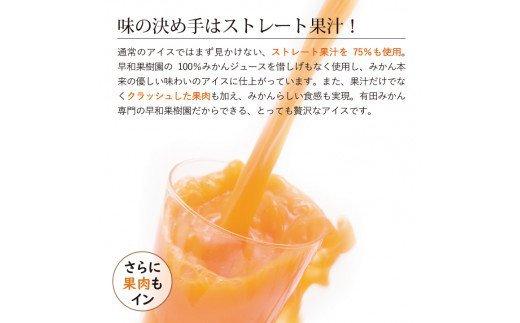 494.【早和果樹園】みかんチョコバー15本入(氷菓)