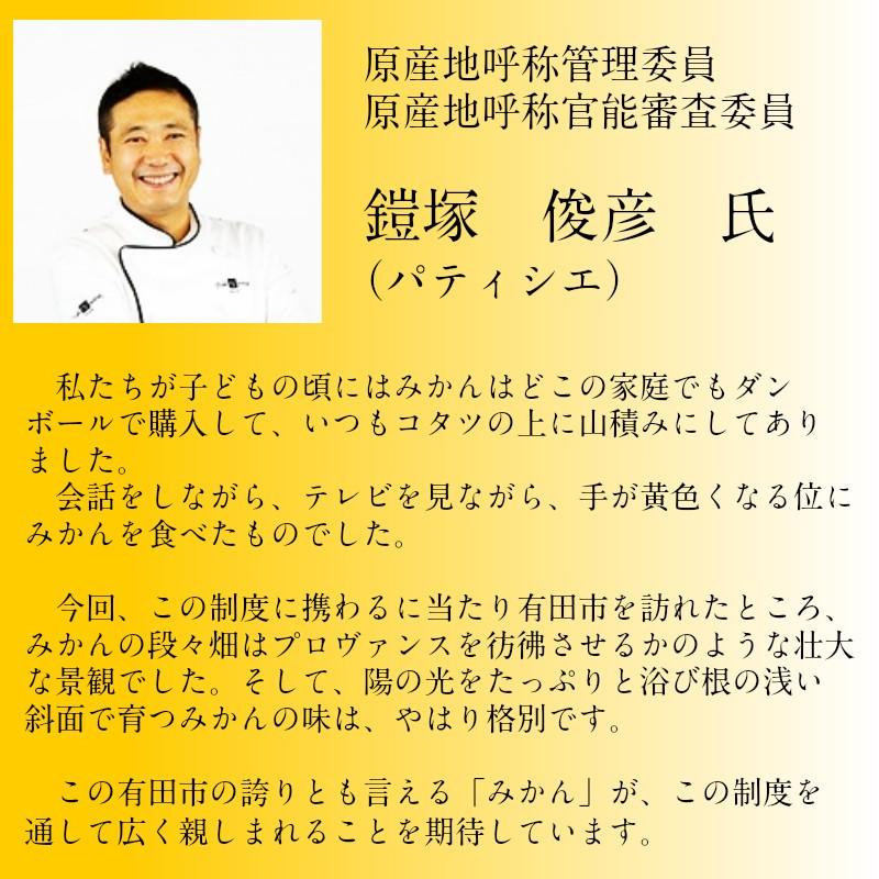 327 【日本初自治体認定フルーツ】有田市認定みかん(3kg)