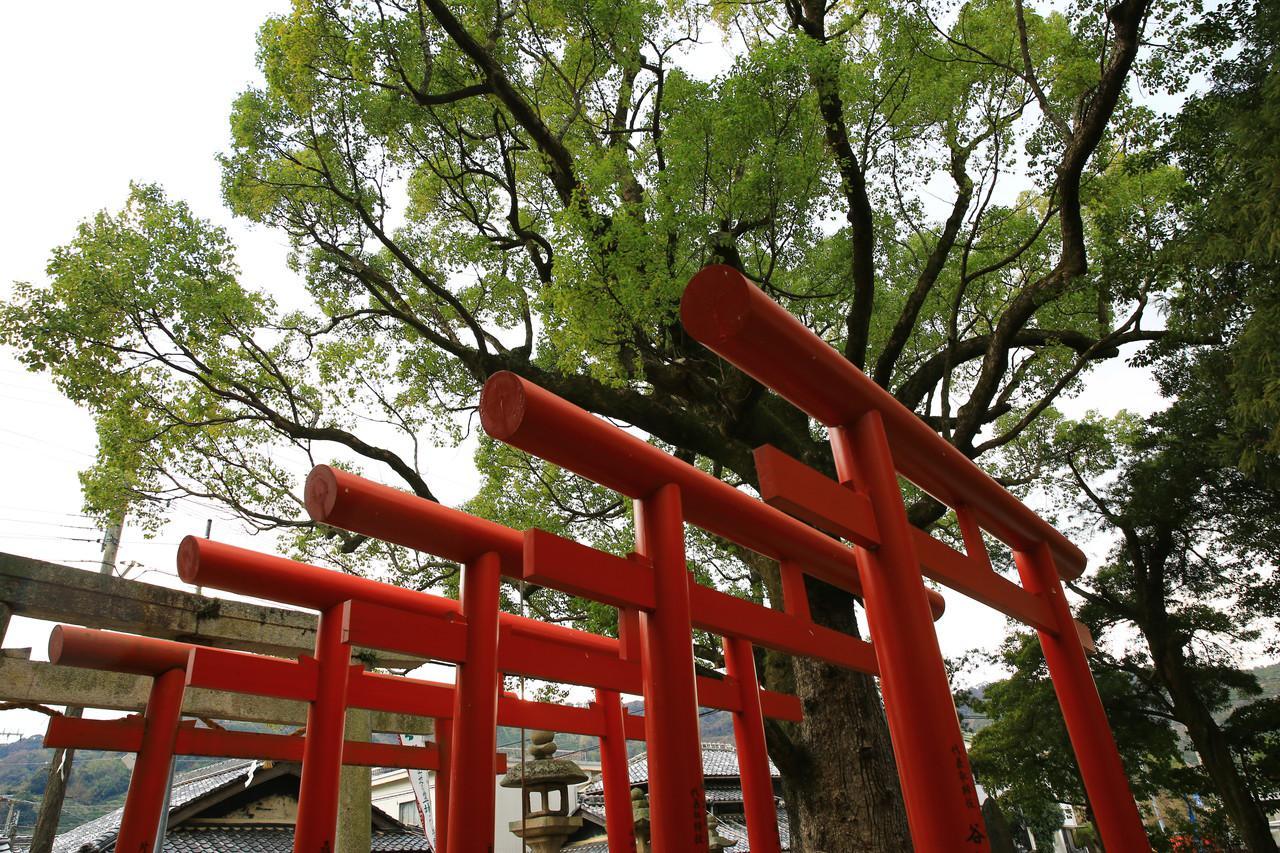 有田市の風景画像