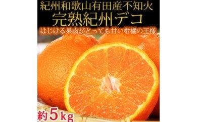 果肉プリプリ♪ 完熟紀州デコ(不知火) 約5kg