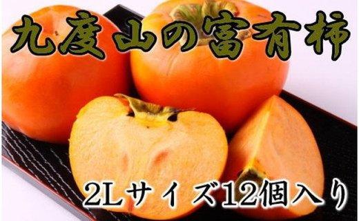【先行予約】 [2021年10月〜発送]≪厳選・産直≫九度山町の富有柿2Lサイズ12個入り