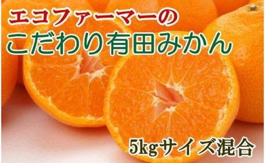 [厳選]エコファーマーの紀州有田みかん約5kg(サイズ混合)