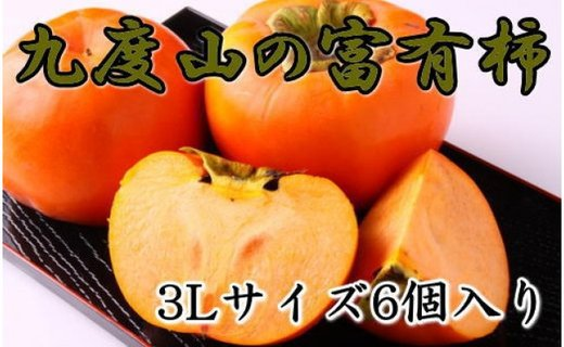 【先行予約】 [2021年10月〜発送]≪厳選・産直≫九度山町の富有柿3Lサイズ6個入り