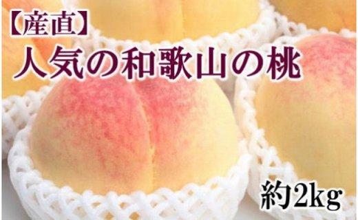 【先行予約】[2021年6月中旬より発送]≪産直・人気の特産品≫和歌山の桃 約2kg・秀選品