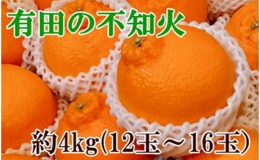【濃厚】有田の不知火約4kg(12玉〜16玉)