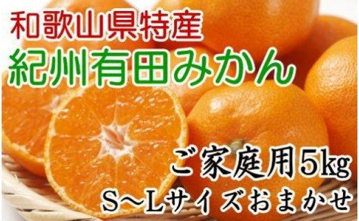 [厳選]紀州有田みかんご家庭用5kg (S〜Lサイズおまかせ)