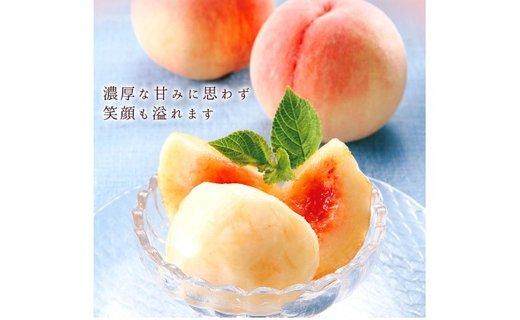 【2020年7月上旬以降発送】和歌山県産 桃の王様『白鳳』 約2kg ≪秀品≫