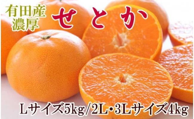 ZD6229_「有田産のせとか」約4~5kg(サイズおまかせ)