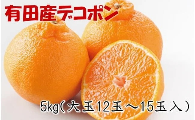 ZD6208_【お味濃厚】紀州有田産の大玉デコポン 約5kg(12玉~15玉入り・青秀以上)