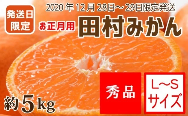 ZA6800_【12月28~29日発送】(お正月用)田村みかん 約5㎏(S~Lサイズ)