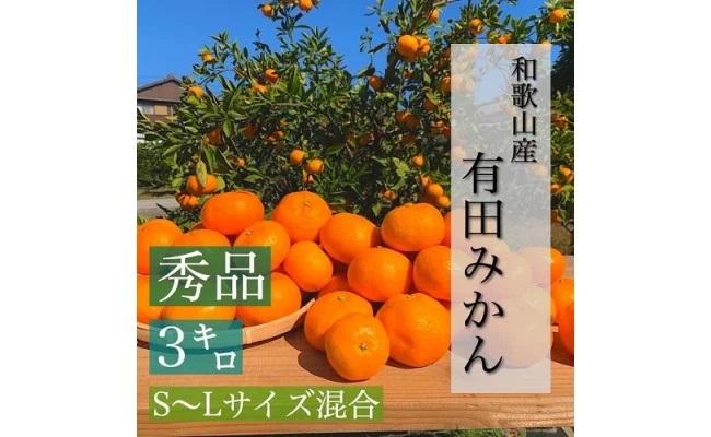 BL6001_【産地直送】和歌山県産有田みかん 3kg