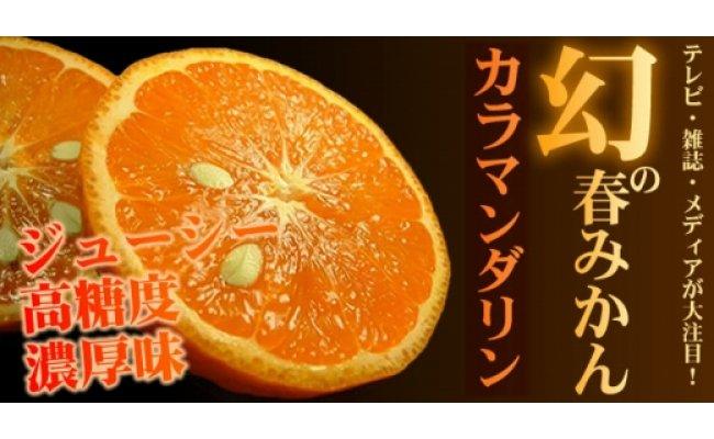 V6027_和歌山県有田産春みかん カラマンダリン 約2.8kg
