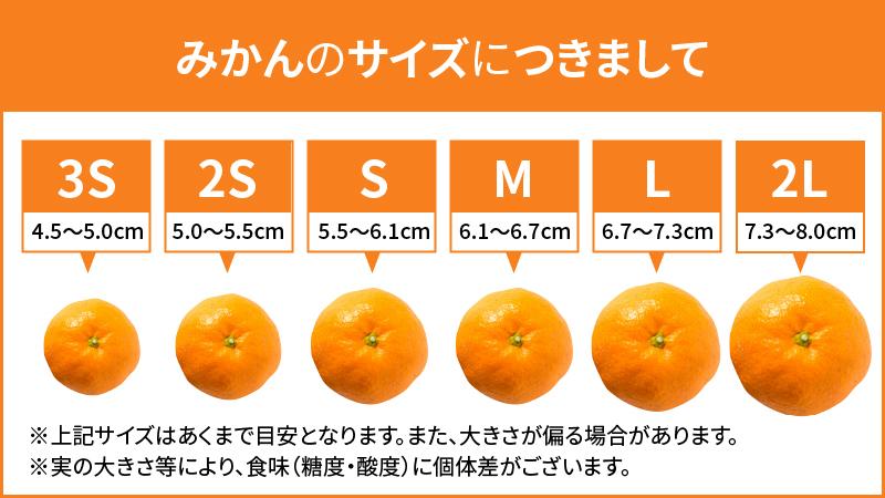 ZE6080_有田のはっさく 化粧箱 2Lサイズ 12個入り【まごころ手選別】