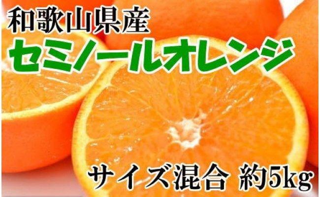 ZD6031_和歌山有田産セミノールオレンジ 約5kg(サイズ混合)
