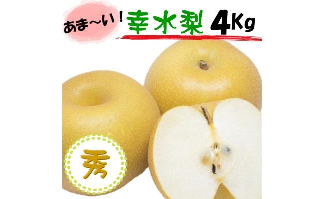 BD6027_果汁たっぷり和歌山の梨!『幸水』秀品 4㎏