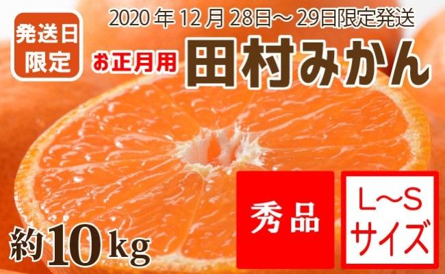 ZA6801_【12月28~29日発送】(お正月用)田村みかん 約10kg(S~Lサイズ)