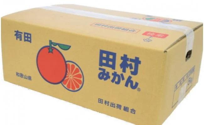 ZD6227_【ブランドみかん】田村みかん 約5kg(2Lサイズ・秀品)
