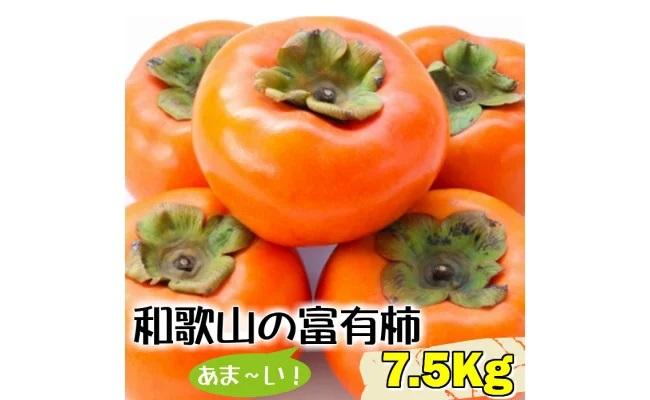 BD6024_人気の秋の味覚【和歌山の富有柿】7.5kg!ギフトにも!