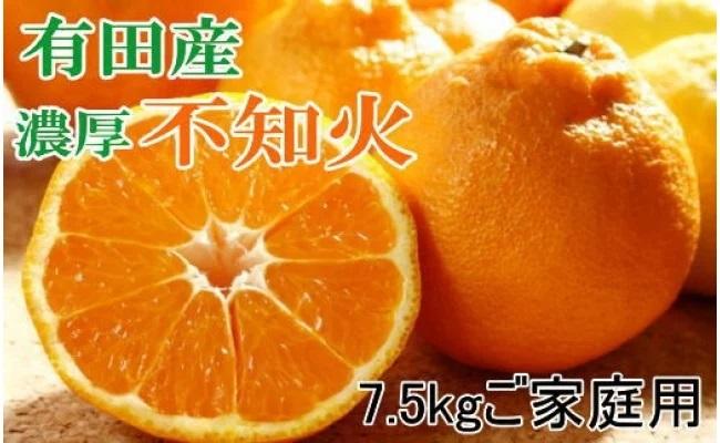 ZD6213_【濃厚】有田の不知火 7.5kg ご家庭用向け(サイズ混合)