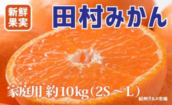 ZA6126_【ご家庭用訳有り】人気の田村みかん 10kg(2S~Lサイズおまかせ)