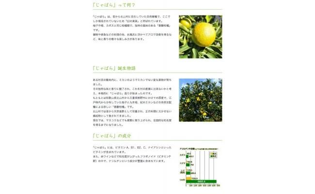 V6157_はちみつじゃばら 500ml×2本 花粉対策の蛇腹 ジャバラ