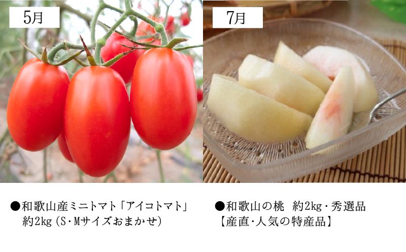 ZD61-T01_【定期便 6回】湯浅町旬の野菜&フルーツバスケット(隔月お届け)
