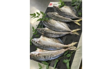 AD6003_紀州湯浅旬の前浜物にこだわった鮮魚問屋のアジの干物セット