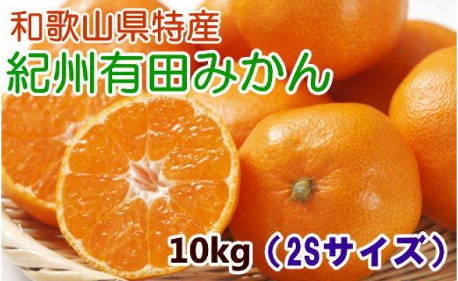 ZD6044_【厳選・産直】紀州有田みかん10kg(2Sサイズ)