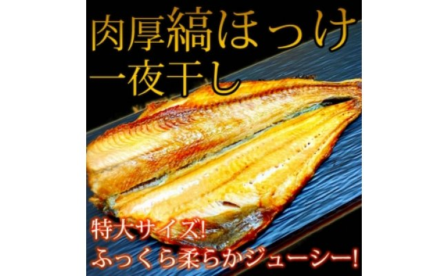 G6013_和歌山魚鶴仕込の国産特大サイズを厳選!縞ほっけ一夜干し 5尾