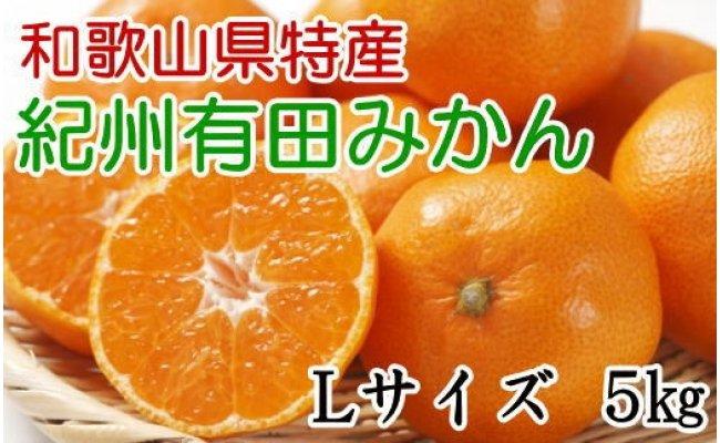 ZD6109_【厳選】紀州有田みかん 5kg (Lサイズ・赤秀)