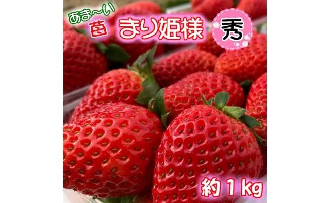 BD6030_あま~い!まりひめ苺1kg『和歌山ブランド苺』 約250g×4パック 【秀品】ギフトにも!