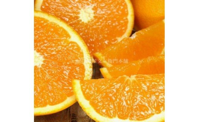 V6030_和歌山県有田産春みかん 田村産清見オレンジ 約4.5kg