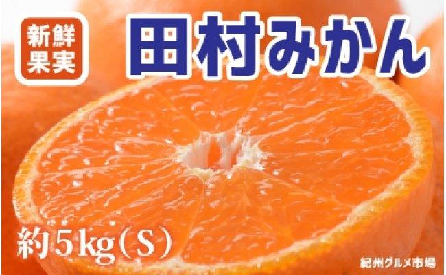 ZA6117_人気の田村みかん 約5kg(Sサイズ)