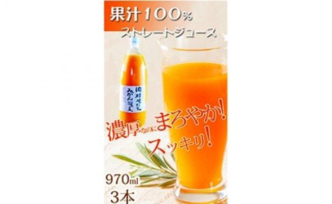 G6006_果汁100%田村そだちみかんジュース 970ml×3本