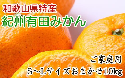ZD6016_紀州有田みかん10kg(S〜L)サイズおまかせ ご家庭用【数量限定】