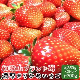 AB6305_農家直送!濃厚完熟まりひめ いちご 12~18粒×2トレイ(約700g)