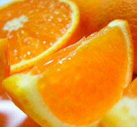 AB7003_【先行予約】有田育ちの濃厚清見オレンジ3kg ※2022年3月上旬~4月下旬頃発送予定